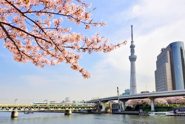 東京団体旅行プラン京都から出発